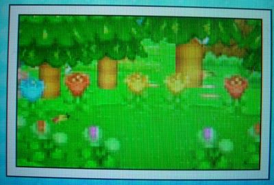 ds_butterfly.jpg